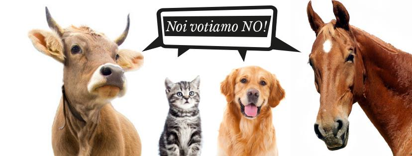 iniziativa_animali
